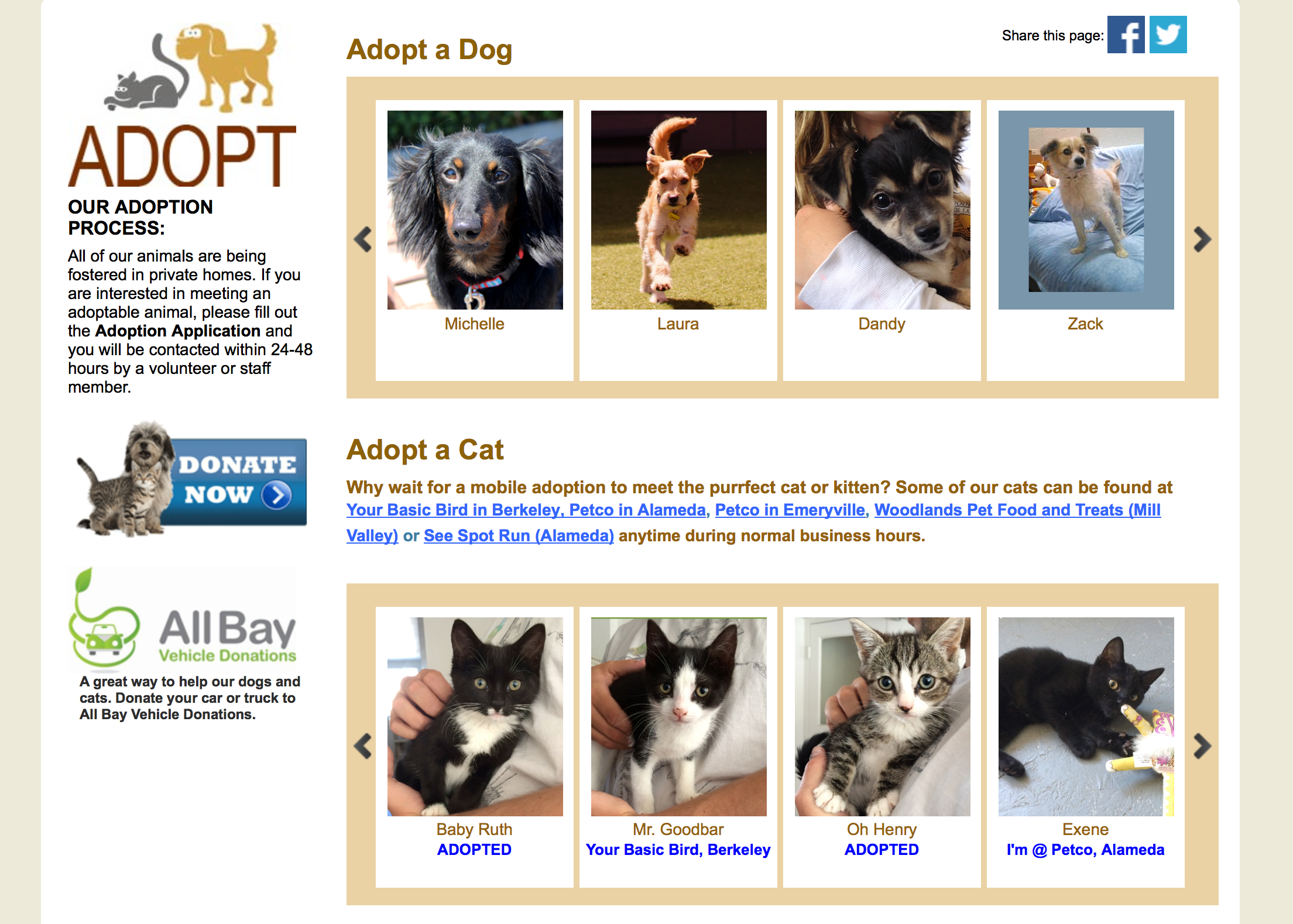Adopt a Dog Cat Photo Slider